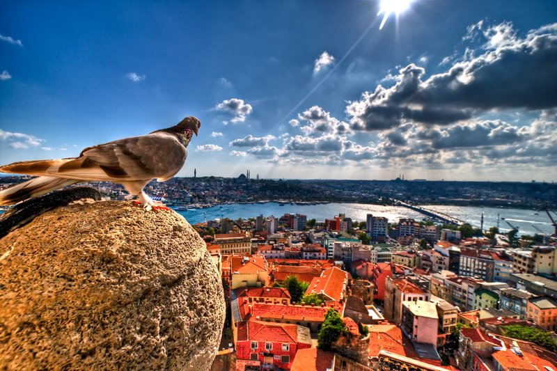 Seven Things Not To Do In Istanbul