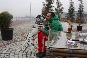 Ahmet Tarik Ceyhan